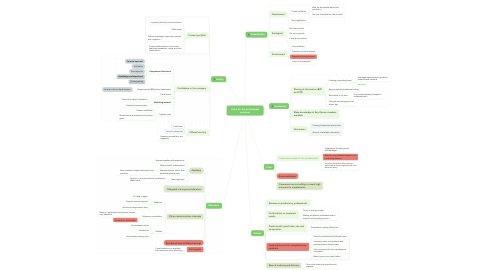 Mind Map: Value for the professional customer