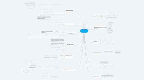 Mind Map: Bilateria