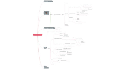 Mind Map: La Teoria General del Delito