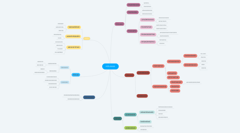 Mind Map: HOLAAAA