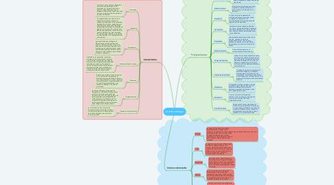 Mind Map: La merceologia