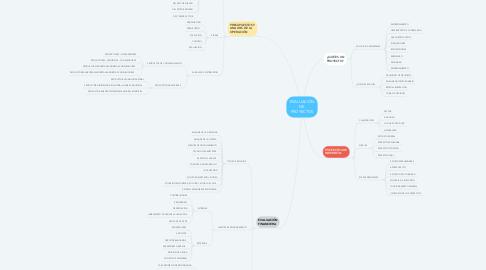 Mind Map: EVALUACIÓN DE PROYECTOS