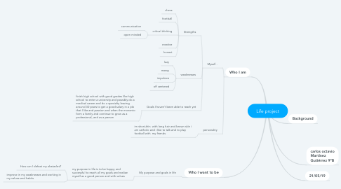 Mind Map: Life project