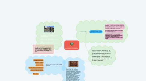 Mind Map: Derchos Humanos y Procuraduría salvadoreña
