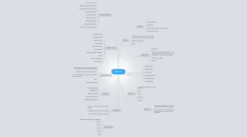 Mind Map: Шнелли..