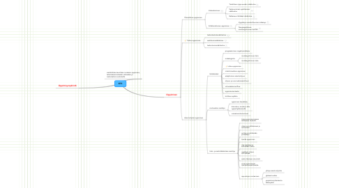 Mind Map: KT3