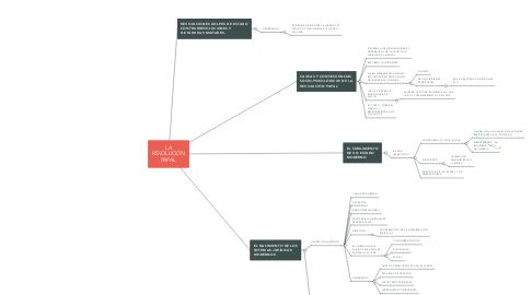 Mind Map: LA REVOLUCIÓN PAPAL.