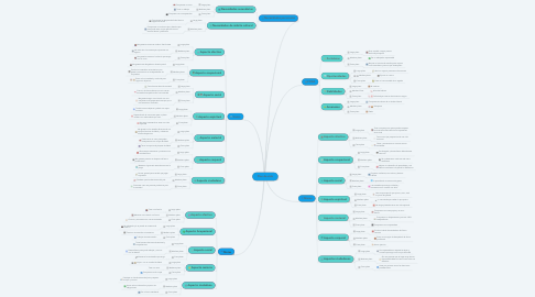 Mind Map: Plan de vida