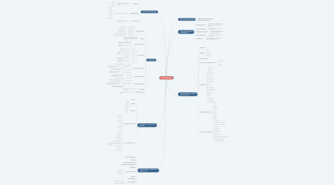 Mind Map: T.12: Programación