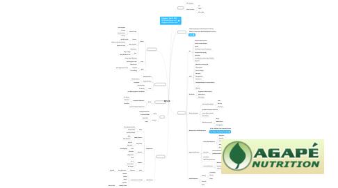 Mind Map: MTHFR
