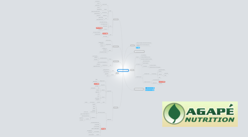 Mind Map: MTHFR Treatment