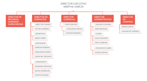 Mind Map: DIRECTOR EJECUTIVO MARTHA GARCÍA