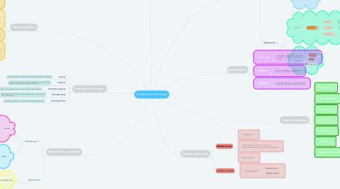 Mind Map: Clasificación de Parásitos