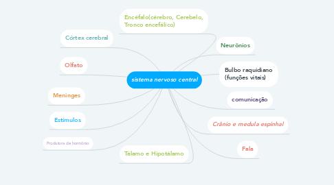 Mind Map: sistema nervoso central