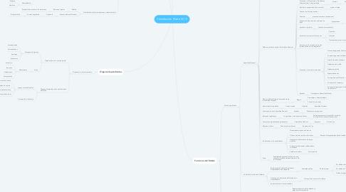 Mind Map: Constitución (Parte III) (1)