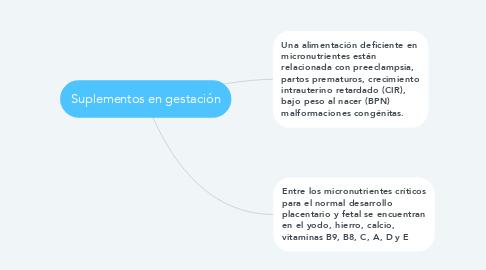 Mind Map: Suplementos en gestación
