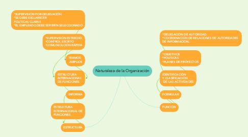Mind Map: Naturaleza de la Organización