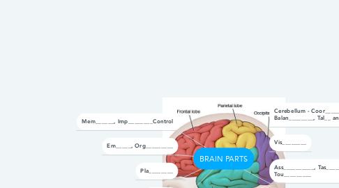 Mind Map: BRAIN PARTS
