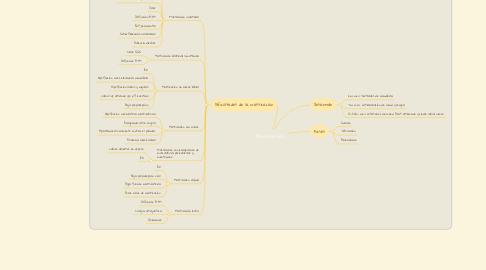 Mind Map: Masticación