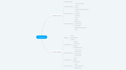 Mind Map: Segmentación