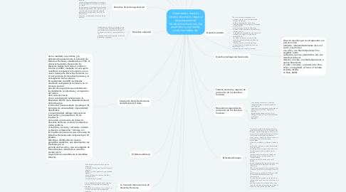 Mind Map: Clasificación, fuentes, sistema universal y regional de protección de  los derechos humanos. De acuerdo a su contenido, podemos hablar de: