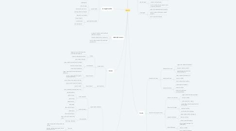 Mind Map: músculos