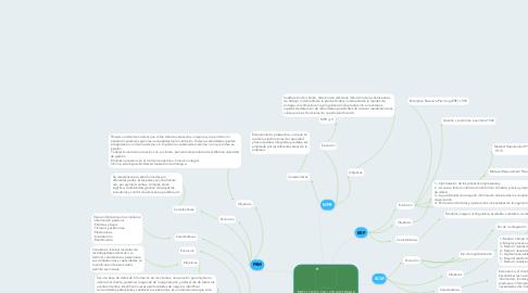 Mind Map: TIPOLOGÍA DE LOS SISTEMAS ERP