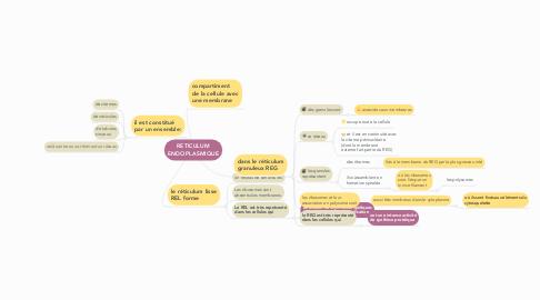 Mind Map: RETICULUM ENDOPLASMIQUE