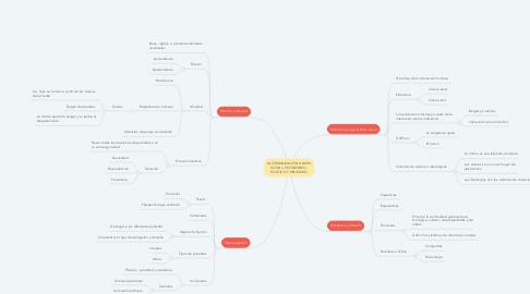 Mind Map: LA ORGANIZACIÓN A NIVEL SOCIAL, ECONÓMICO, POLÍTICO Y RELIGIOSO