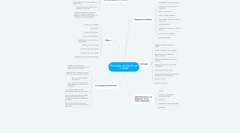 Mind Map: Principios de Gestión de Calidad