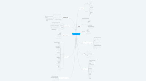 Mind Map: Computer System