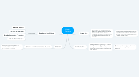 Mind Map: Marco Teorico