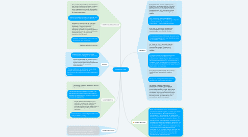 Mind Map: COMMON LAW