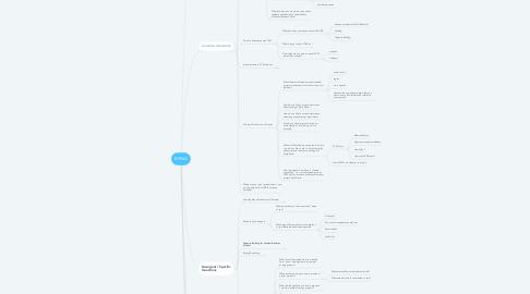 Mind Map: MSNA