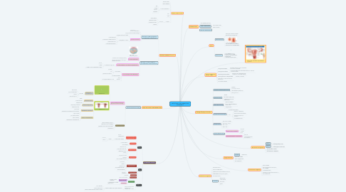 Mind Map: INFECTION & INFLAMMATION DISORDERS