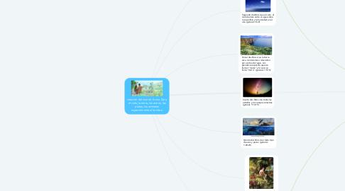 Mind Map: creación del mundo. forma Dios, el cielo, la tierra, los astros, las platas, los animales especialmente al hombre