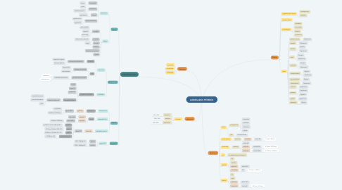 Mind Map: AGREGADOS PÉTREOS