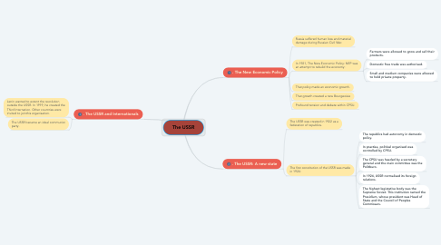 Mind Map: The USSR