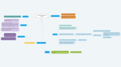Mind Map: FISIOPATOLOGÍA DEL SHOCK