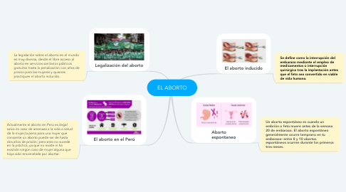 Mind Map: EL ABORTO