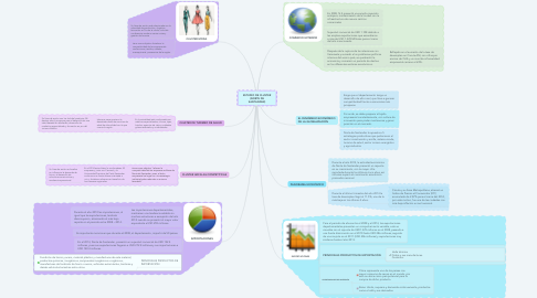 Mind Map: ESTUDIO DE CLUSTER (NORTE DE SANTANDER)