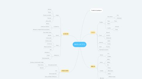 Mind Map: MUELLECITO