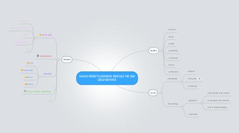 Mind Map: VAKOVERSTIJGENDE REFLECTIE ENZELFADVIES