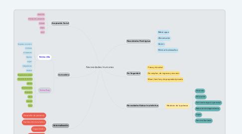 Mind Map: Necesidades Humanas