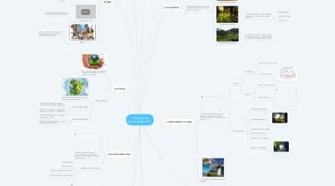 Mind Map: CUIDADO DEL MEDIO AMBIENTE