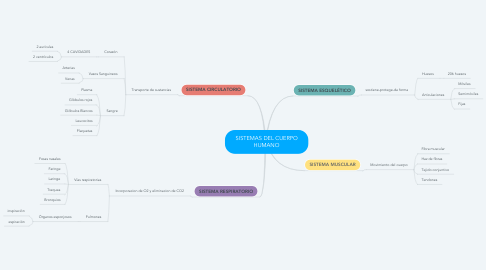 Mind Map: SISTEMAS DEL CUERPO HUMANO