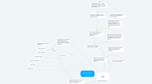 Mind Map: Dizziness, blurred vision, and felt like passing out