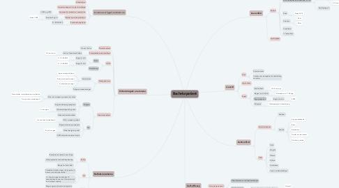 Mind Map: Bachelorpatient