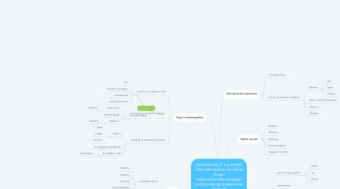 Mind Map: Hvordan kan IT og særligt CAS-værktøjerne, der bliver brugt i matematikundervisningen, bedst bidrage til elevernes læring?