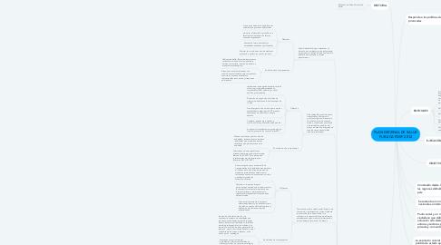 Mind Map: PLAN DECENAL DE SALUD PUBLICA PDSP 2012